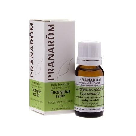 Pranarôm aceite esencial de eucalipto radiata 10ml