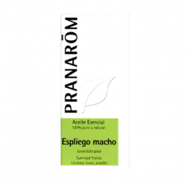 Pranarôm Aceite Esencial de Espliego macho 10ml